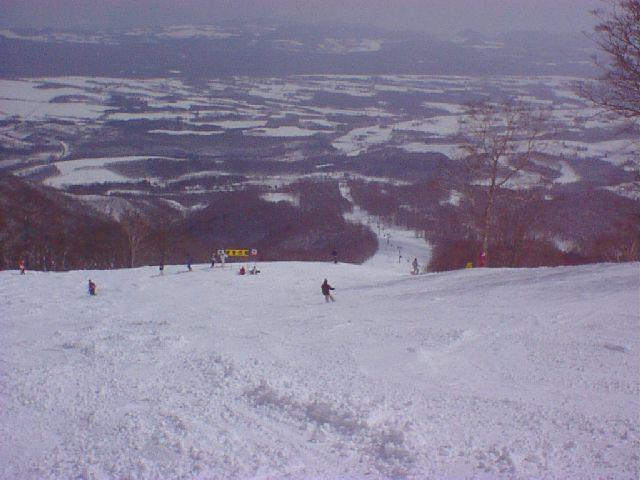 20000311.jpg