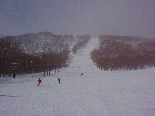 20020210.jpg