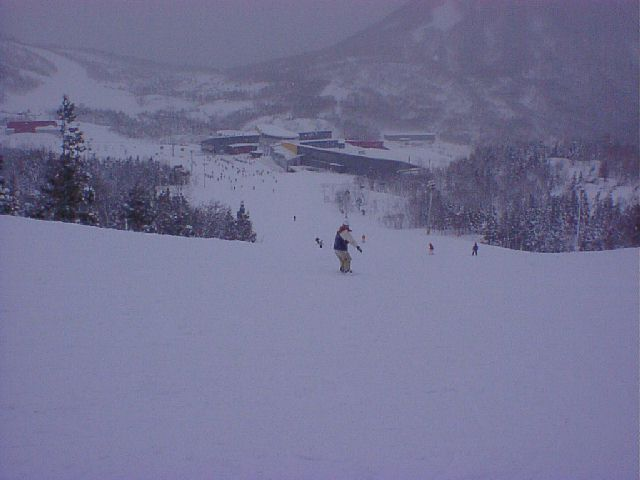 20020211.jpg