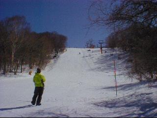 20020303.jpg