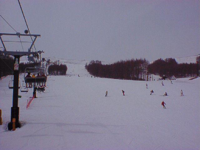 20020316.jpg