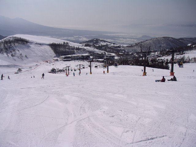 20030316.jpg
