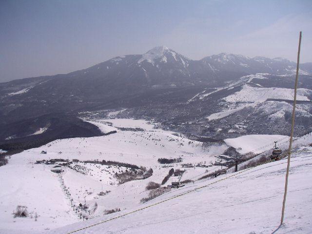 20030316a.jpg