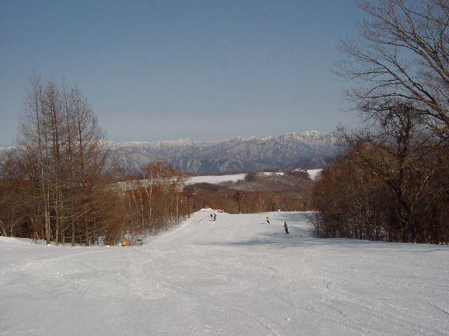 20030323.jpg