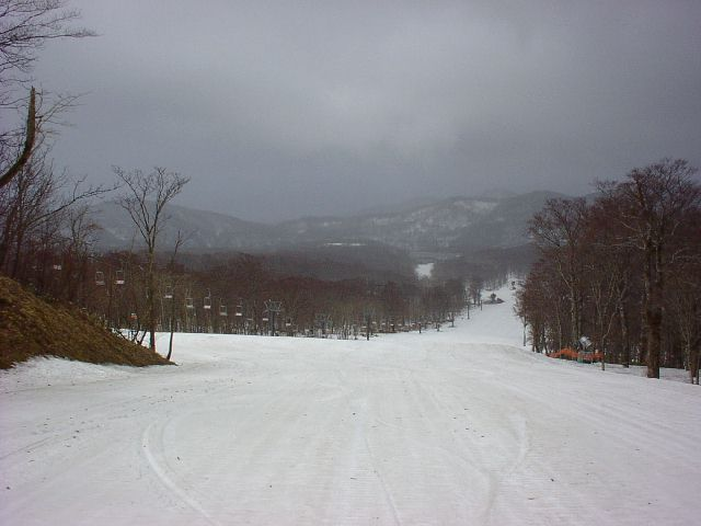 20030421.jpg