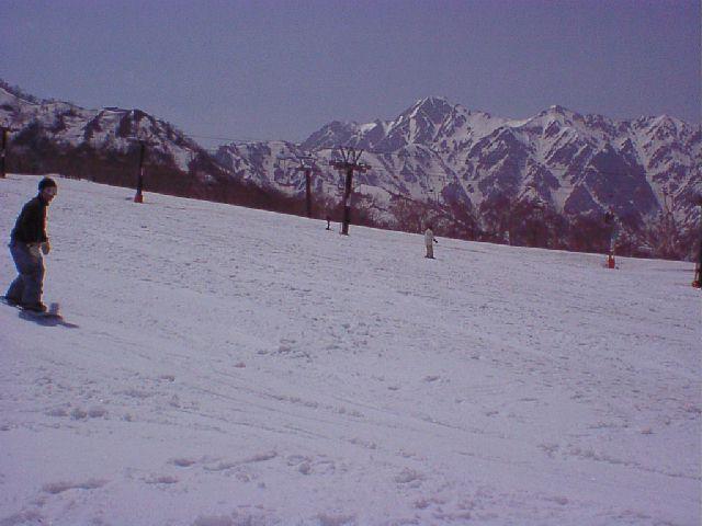 20030428.jpg