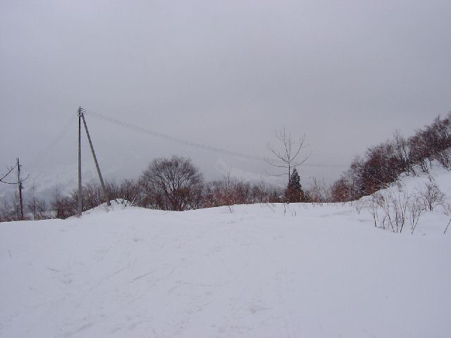 2003123042.jpg