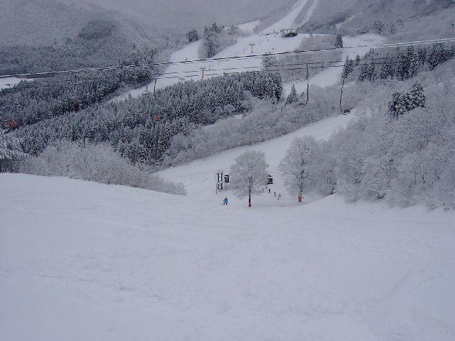 20040104.jpg