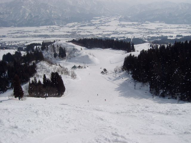 20040214a.jpg