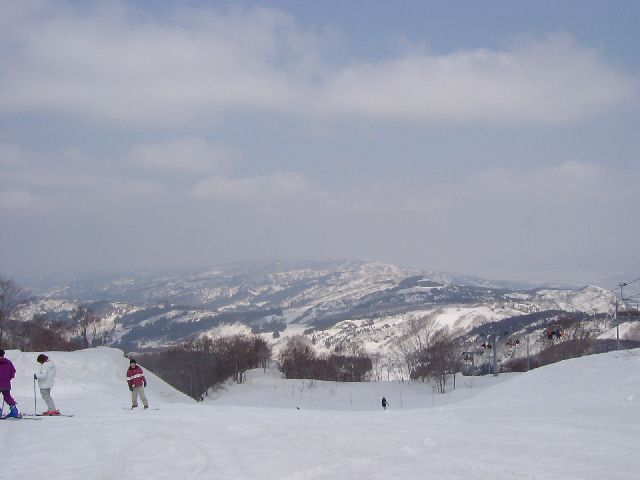 20040315.jpg