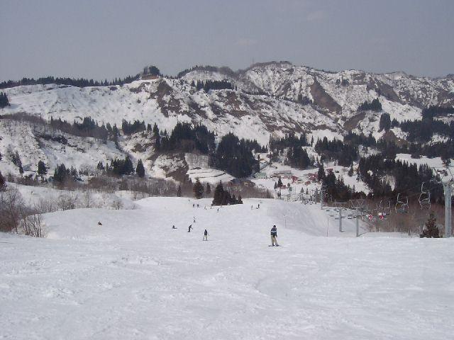 20040315e.jpg