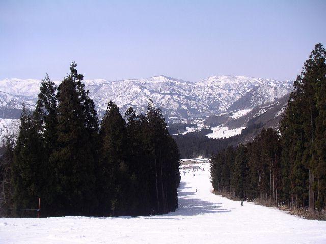 20040328.jpg