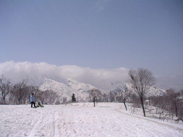 20040501a8.jpg
