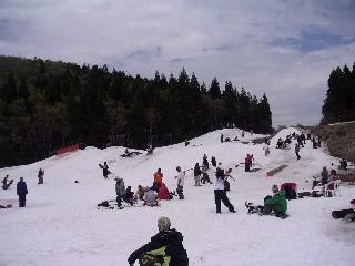 20040503.jpg