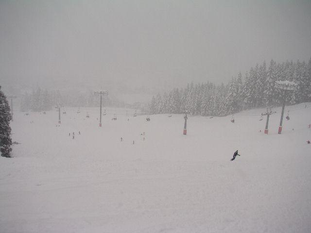 20041231g.jpg