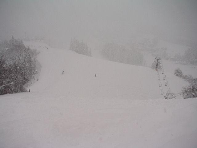 20050101d.jpg