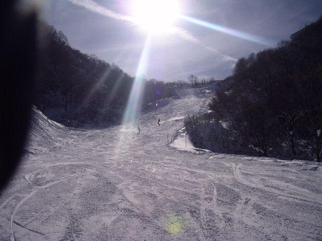 20050103d.jpg