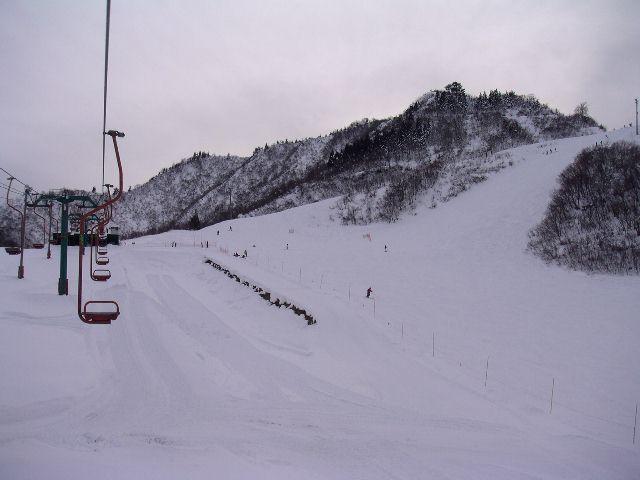 20050103p.jpg