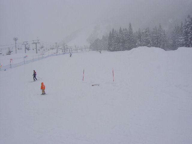 20050212a.jpg
