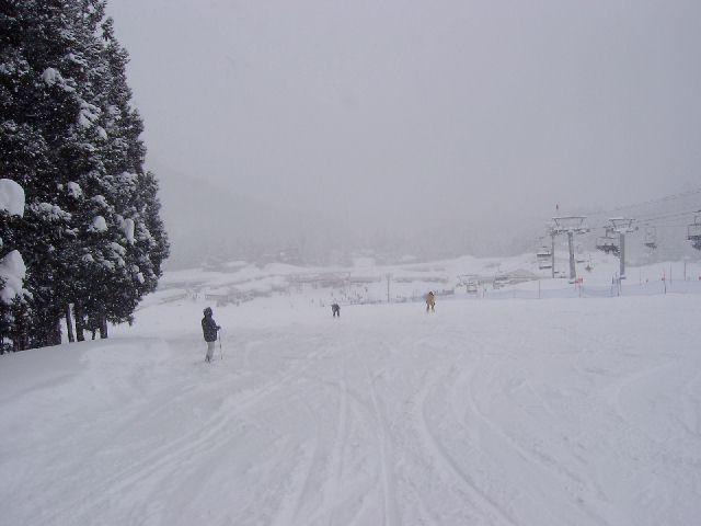 20050212c.jpg