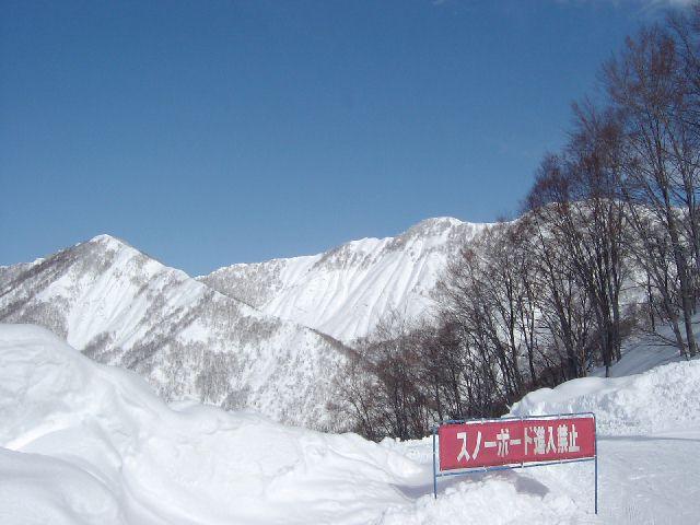 20050213e.jpg