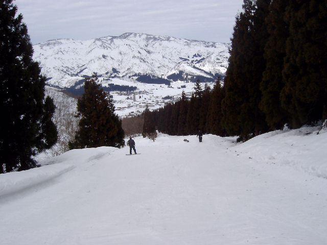 20050219a5.jpg