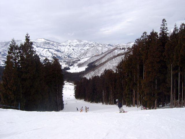 20050219b2.jpg
