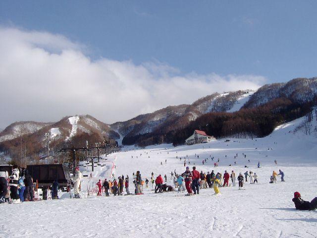 20050220.jpg