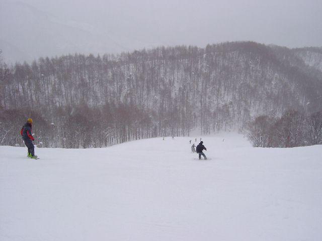 20050220a4.jpg