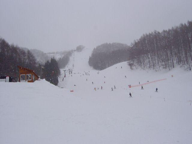 20050220a5.jpg