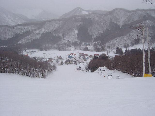 20050220a6.jpg