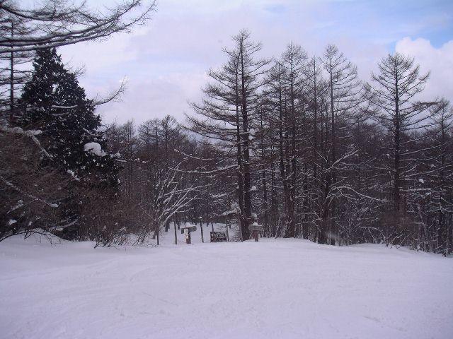 2005030504.jpg