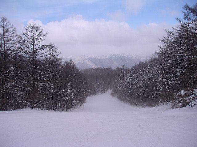 2005030505.jpg