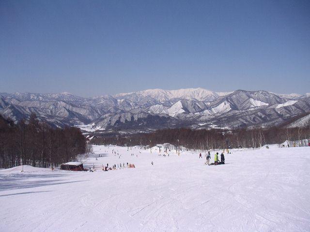 2005030604.jpg