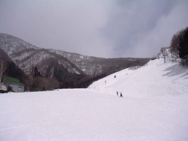 20050312.jpg