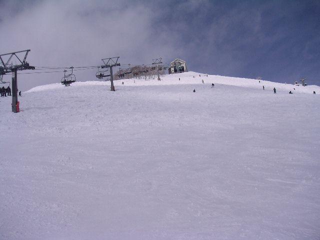 20050313.jpg