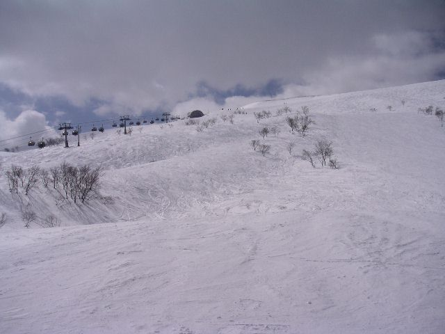 20050319.jpg