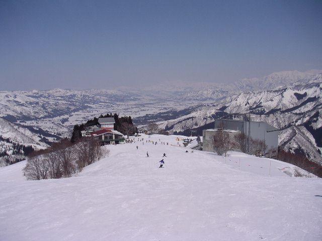 20050321.jpg
