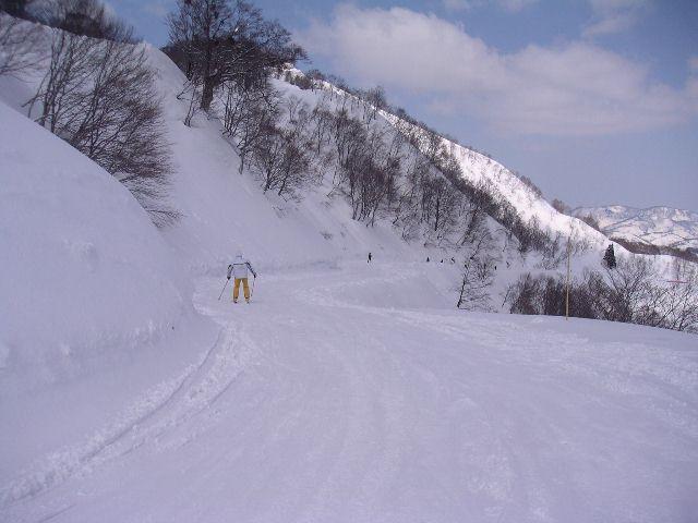 2005032111.jpg