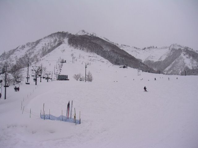 20050326.jpg