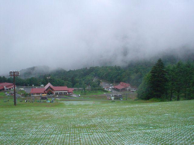 20050813.jpg