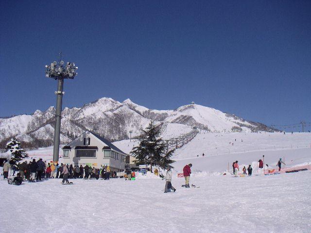 20060129.jpg