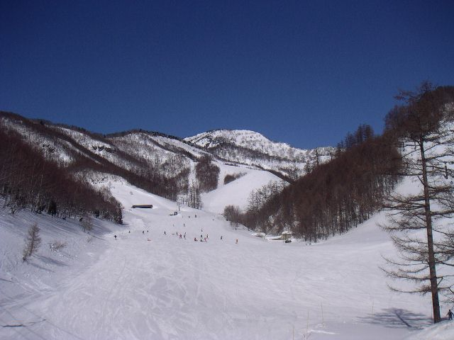 20060218.jpg