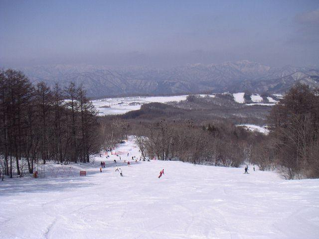 20060305.jpg