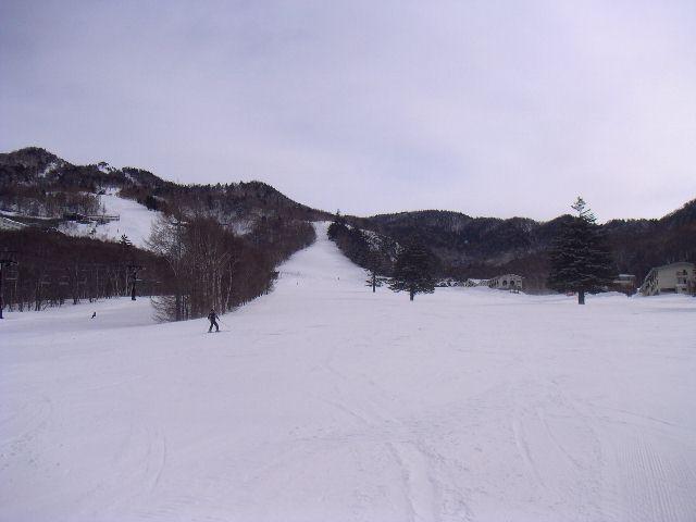 20060318a.jpg