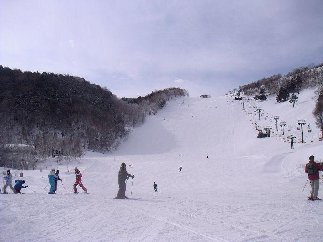 20060318b.jpg