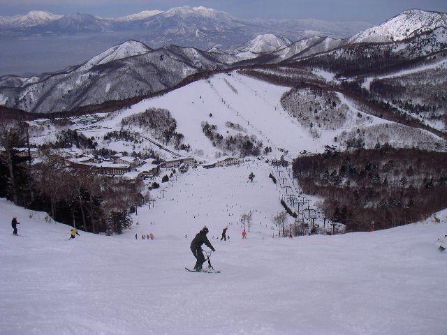 20060318d.jpg