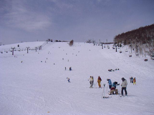 20060318e.jpg