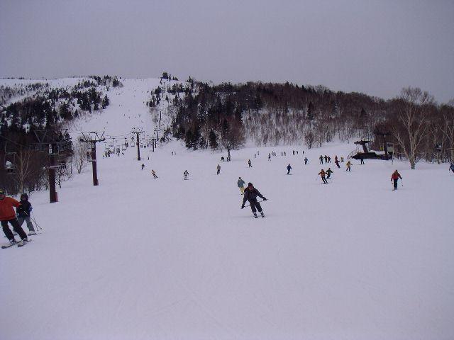 20060318h.jpg
