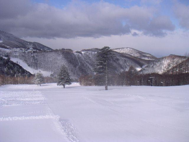 20060320a.jpg